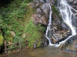 Arroyo Guacamaya
